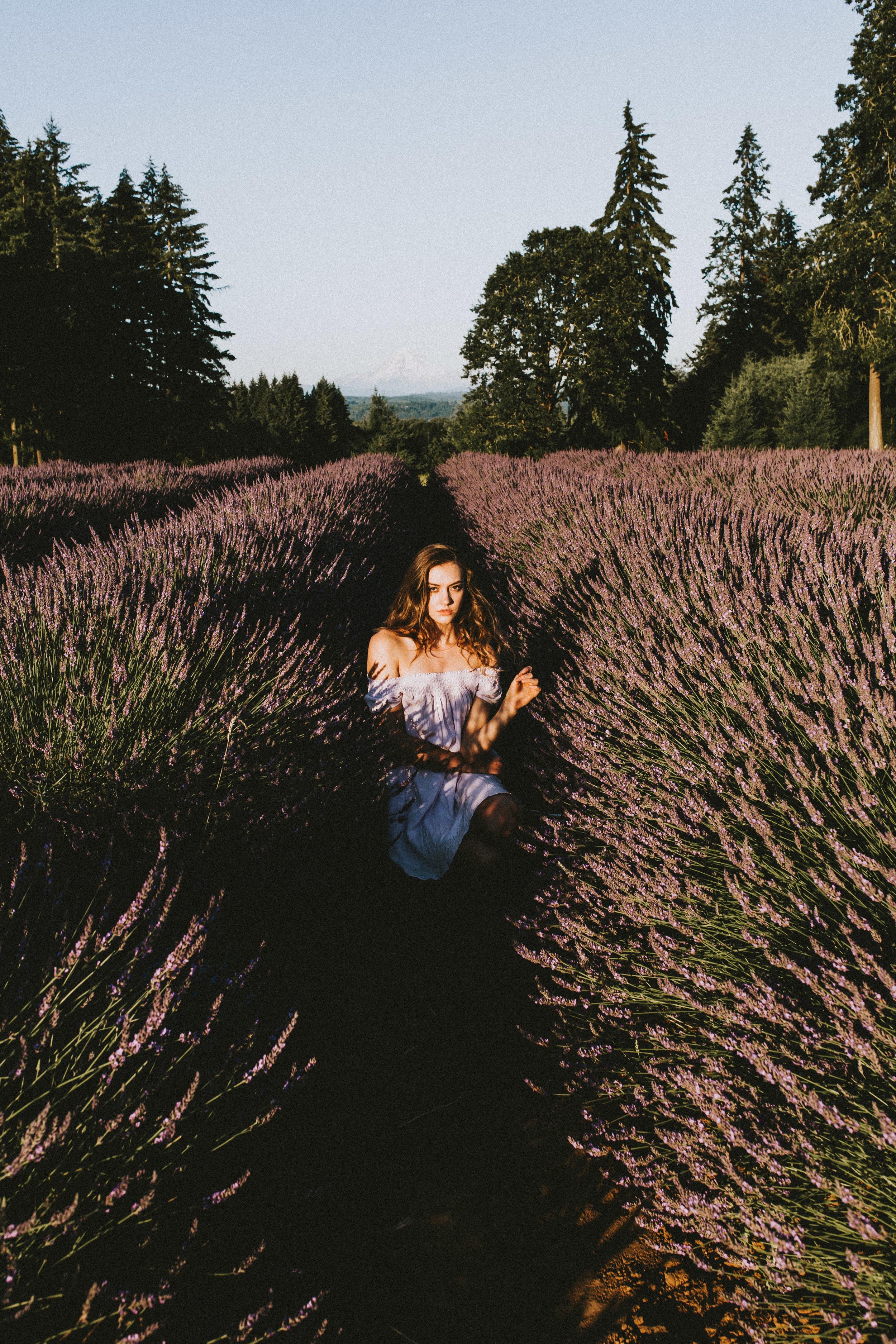 samlandreth-lavender-33.jpg