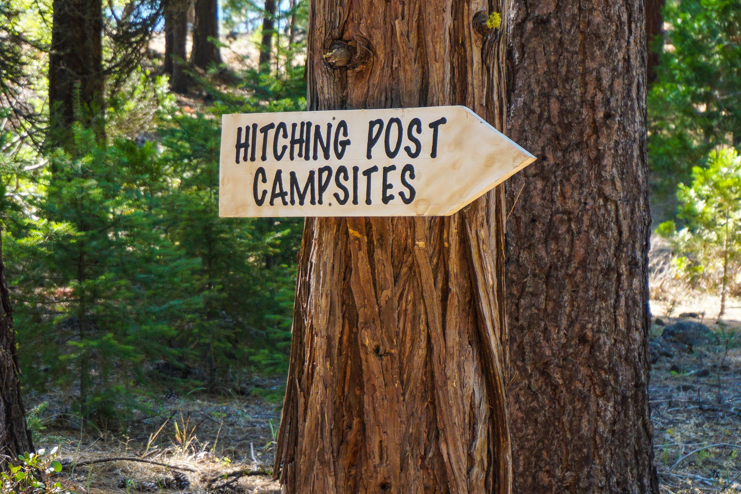 Camping - Hithcing Post.jpg
