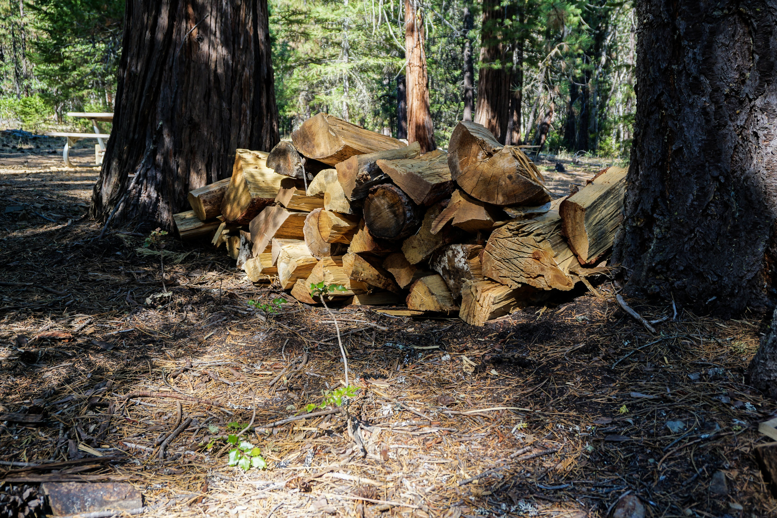 Complimentary Firewood