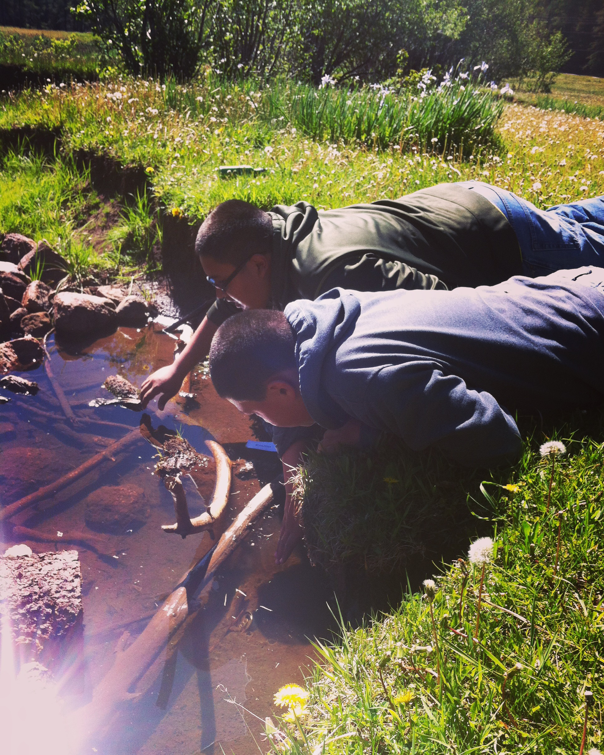 Students explore the ecosystem and collect water samples from Clear Creek