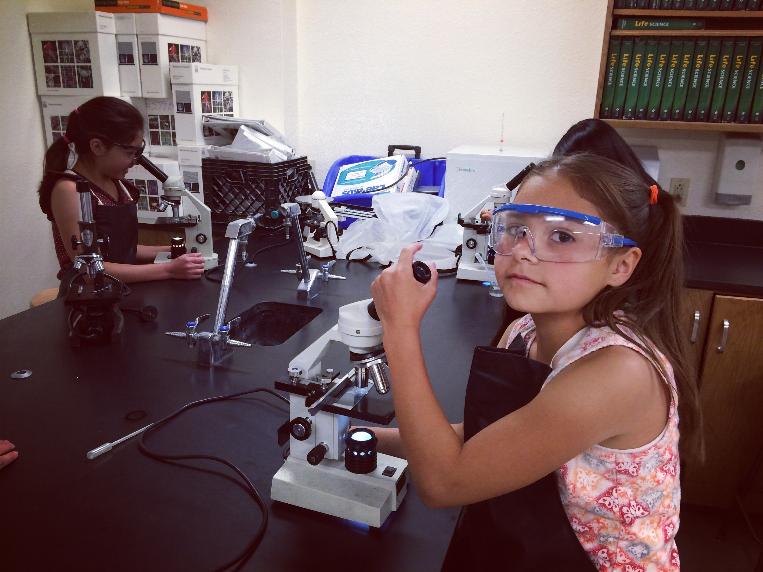 Students observe water samples under the microscope