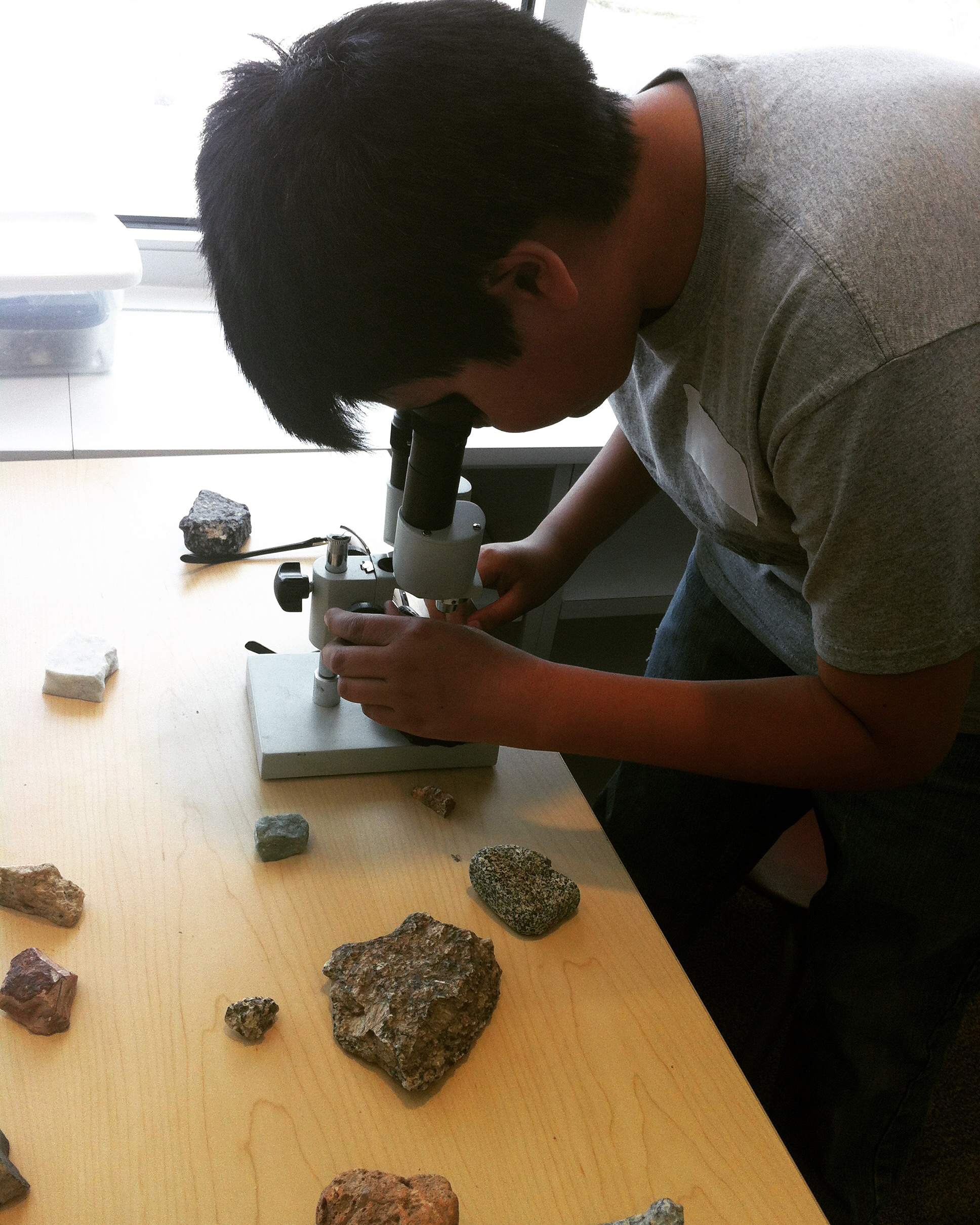 Student classifyies rock types using a microscope