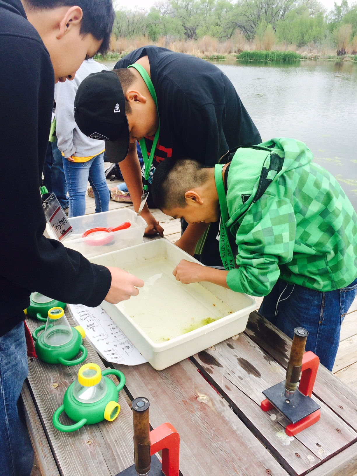 Lybrook students examine pond water