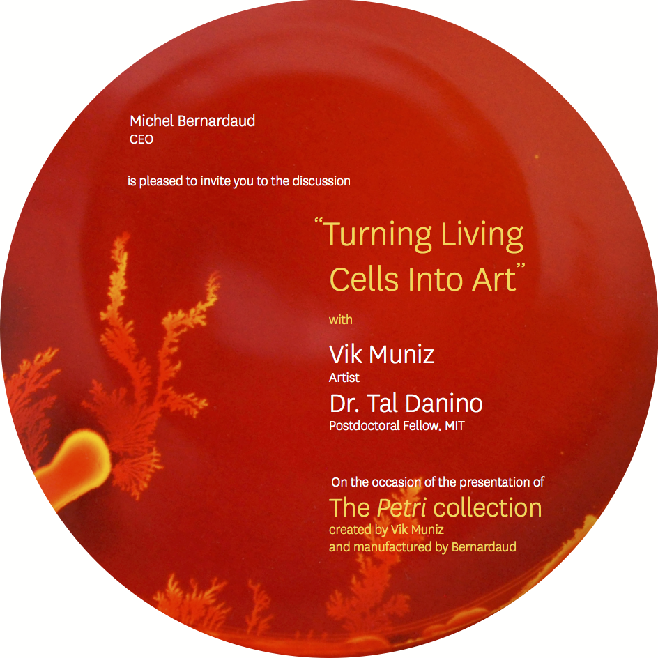 Vik+Muniz+Invitation+p1.png