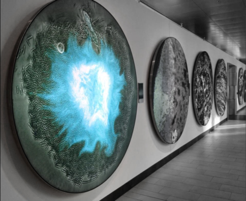 Supernova image at the Koch Institute Gallery, 2014