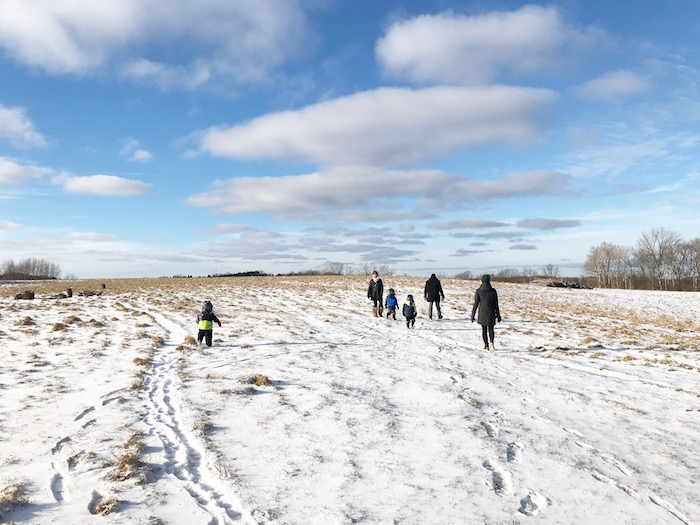We started the new year with a frigid walk in southern Minnesota, which was ten degrees warmer than it was in the Twin Cities, where there was a high of 6 degrees.