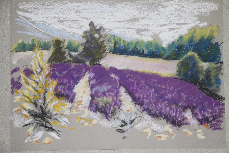 Pastellkreide im Lavendelfeld