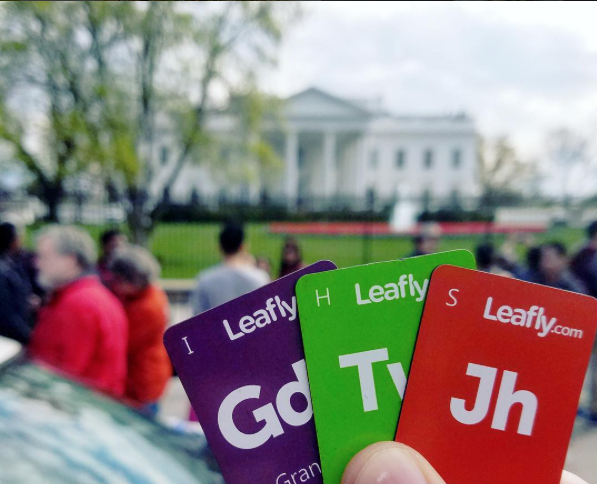 Leafly copy.png