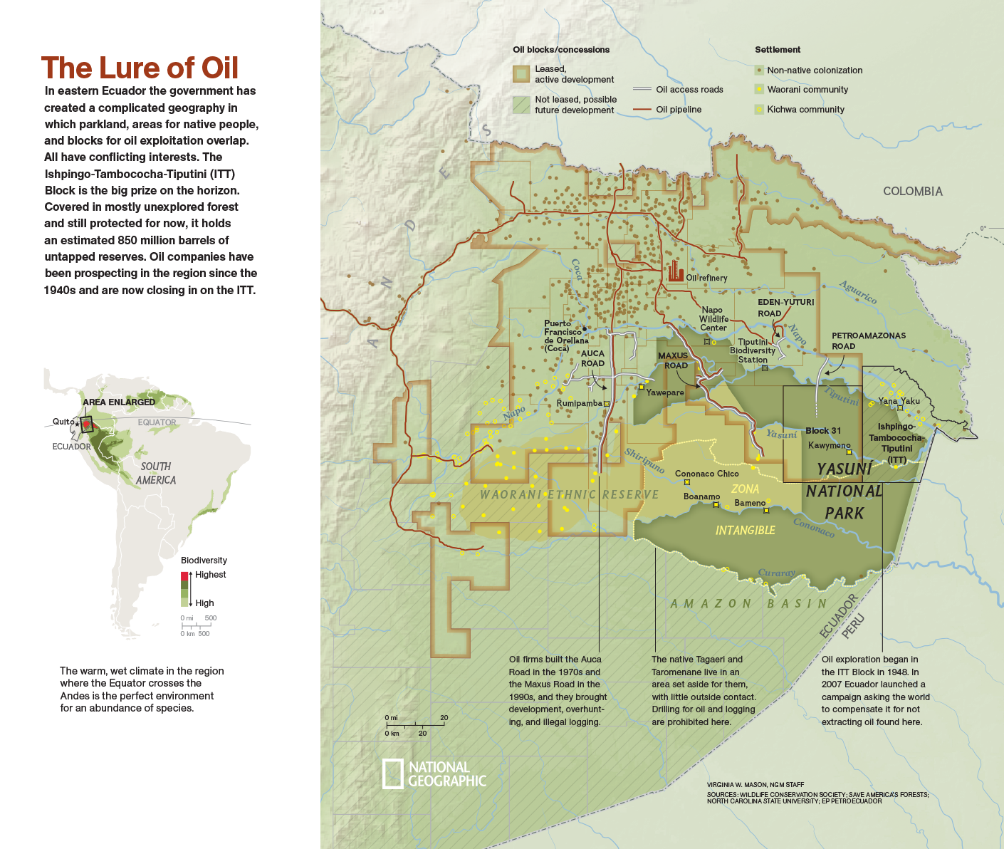 The Lure of Oil