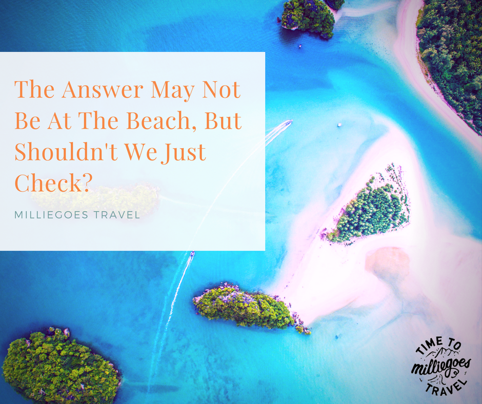 The Answer May Not Be At The Beach, But Shouldn't We Just Check-.png
