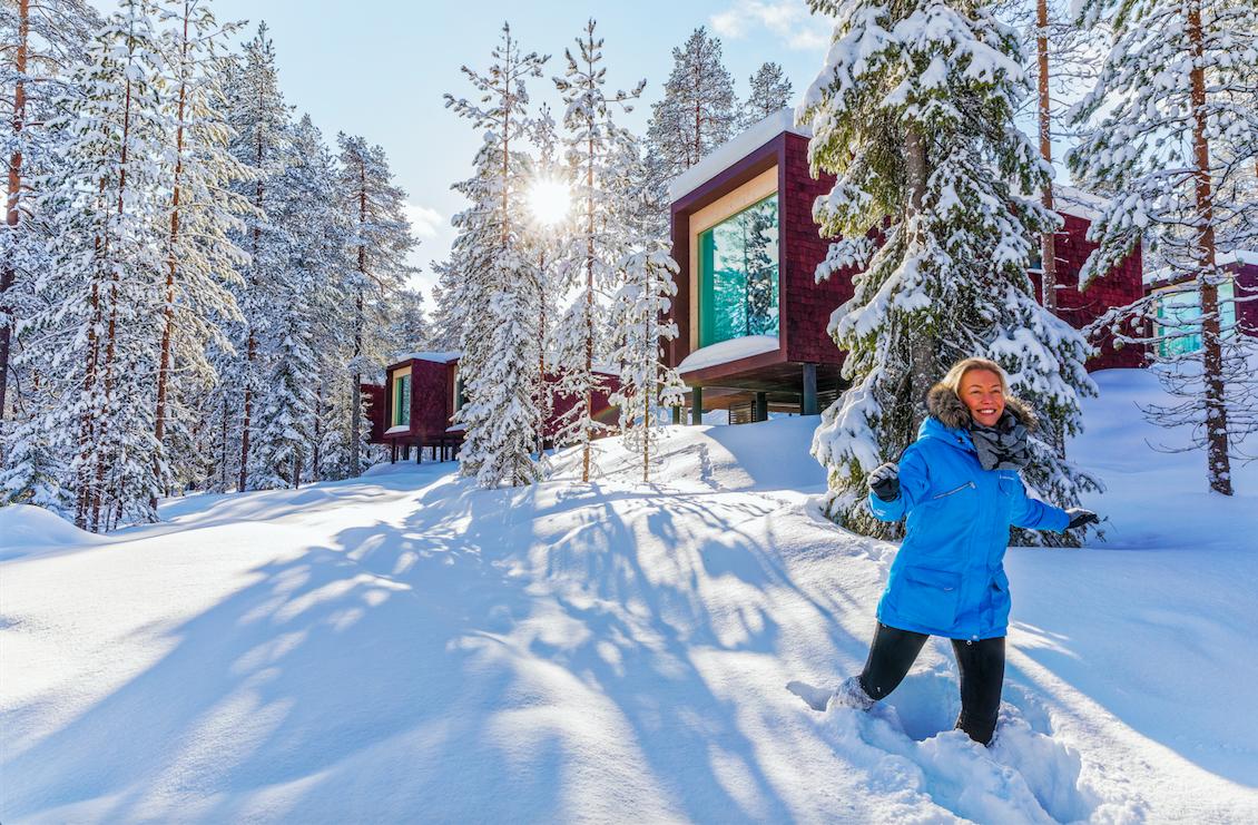 Image courtesy of Arctic Treehouse Hotel
