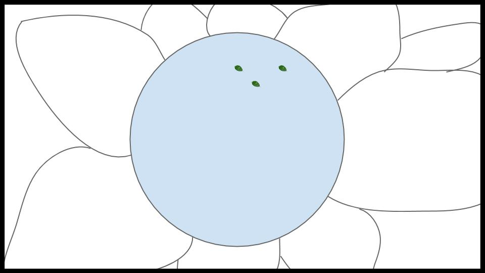 Bromeliad Ecosystem Game Idea (6).jpg