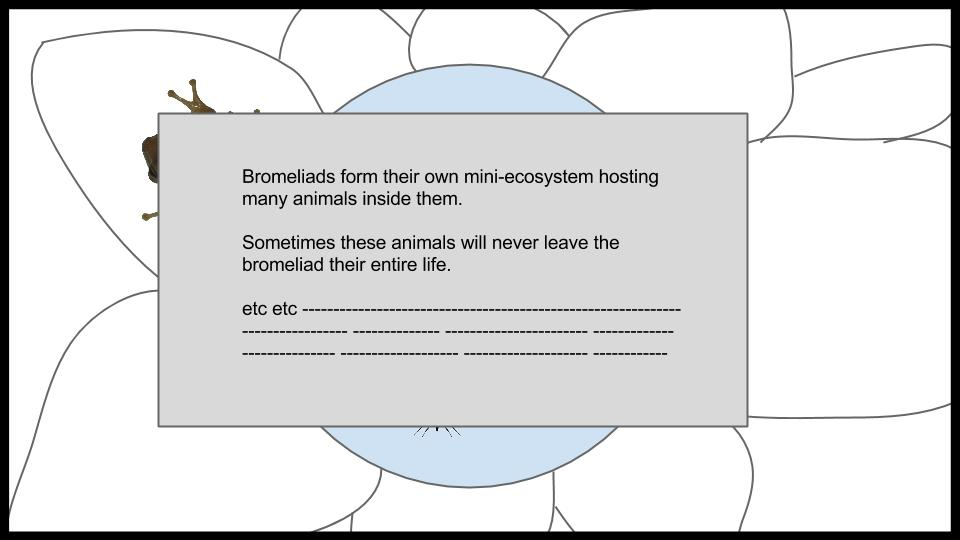 Bromeliad Ecosystem Game Idea (30).jpg