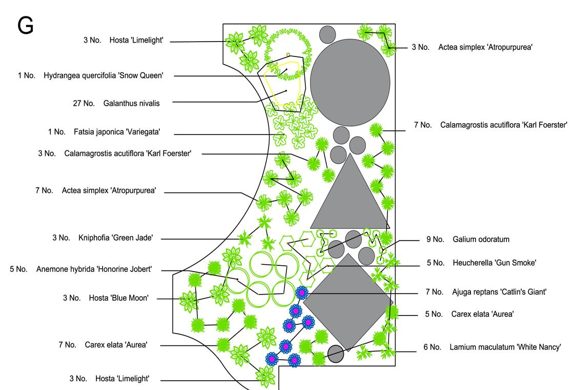 Fairfield-SCENE1_web.jpg