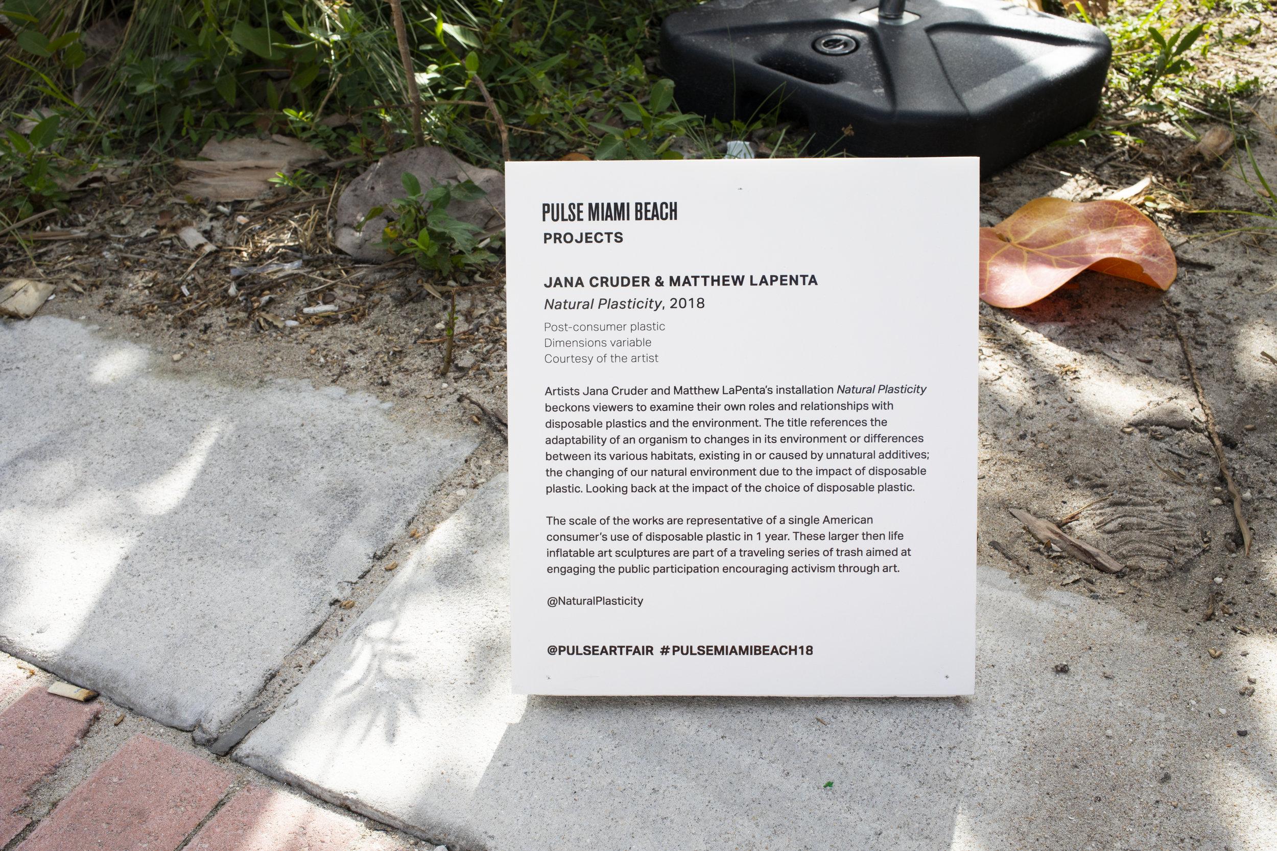 Cruder_LaPenta_Natural_Plasticity_Miami-6221.jpg