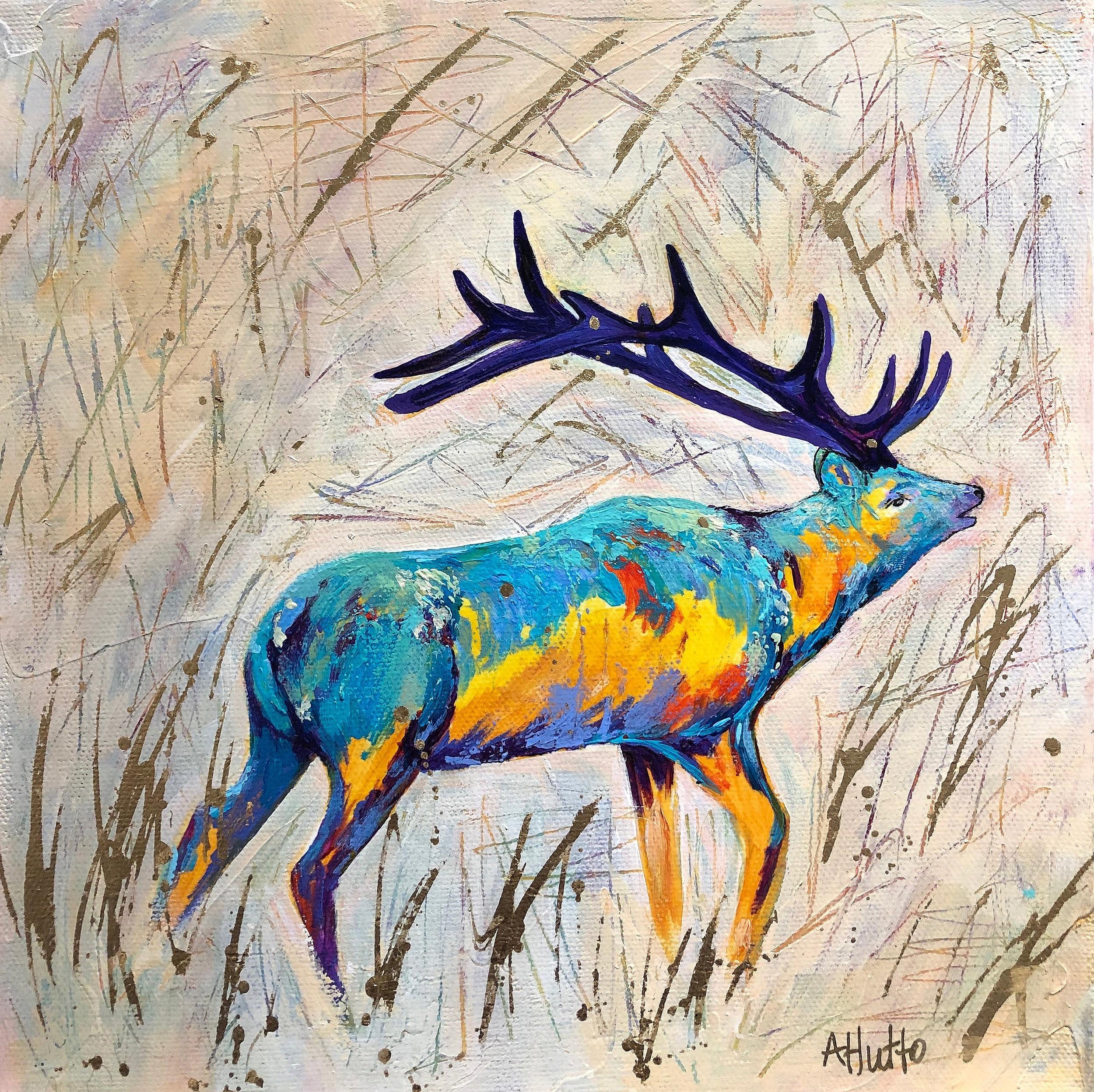 Morning Call-Elk