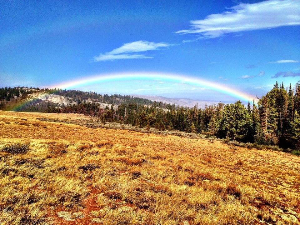Aspen Glade Rainbow Oct 2012