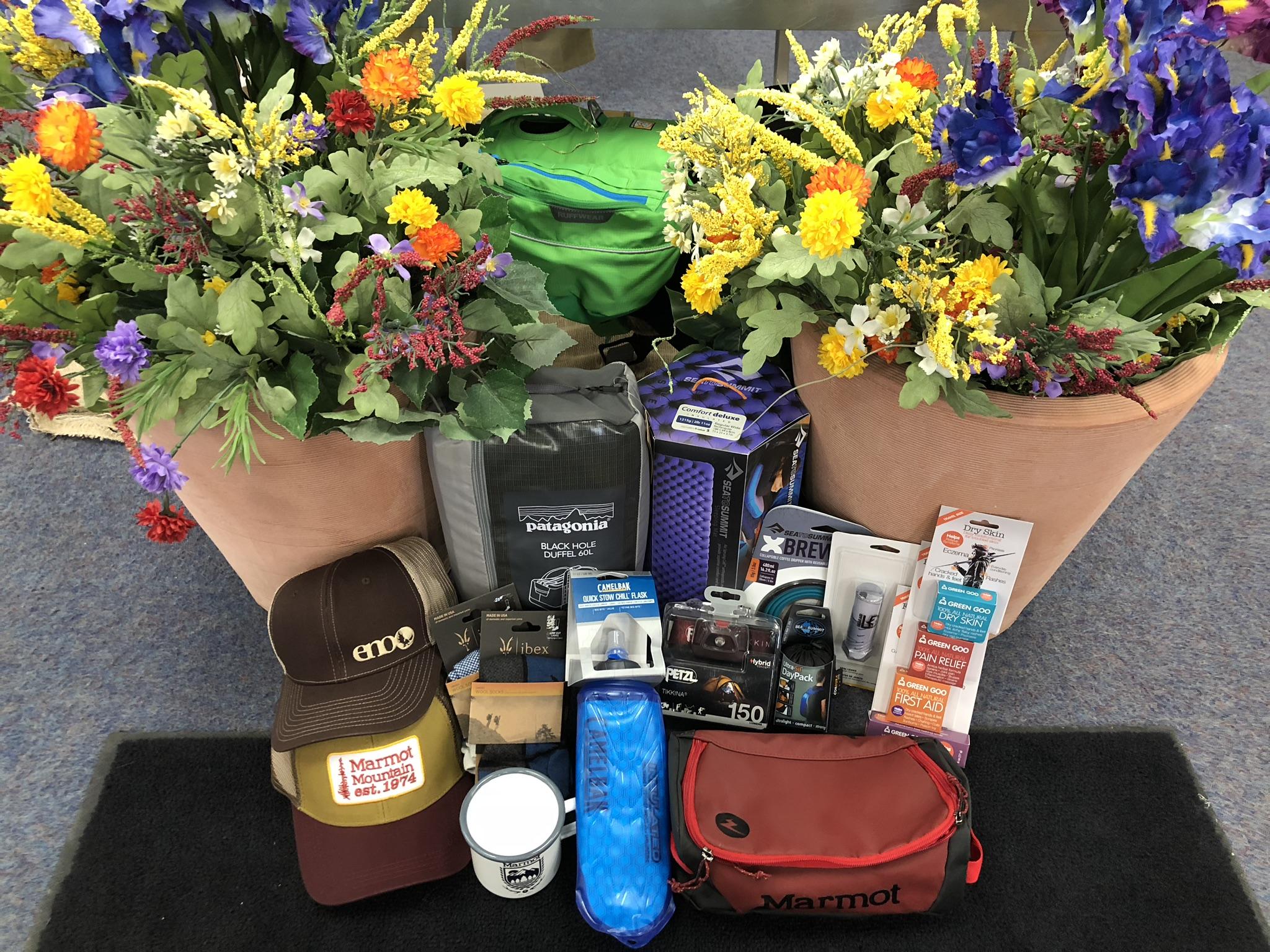 Raffle 3 Patagonia swag bag (1).jpg