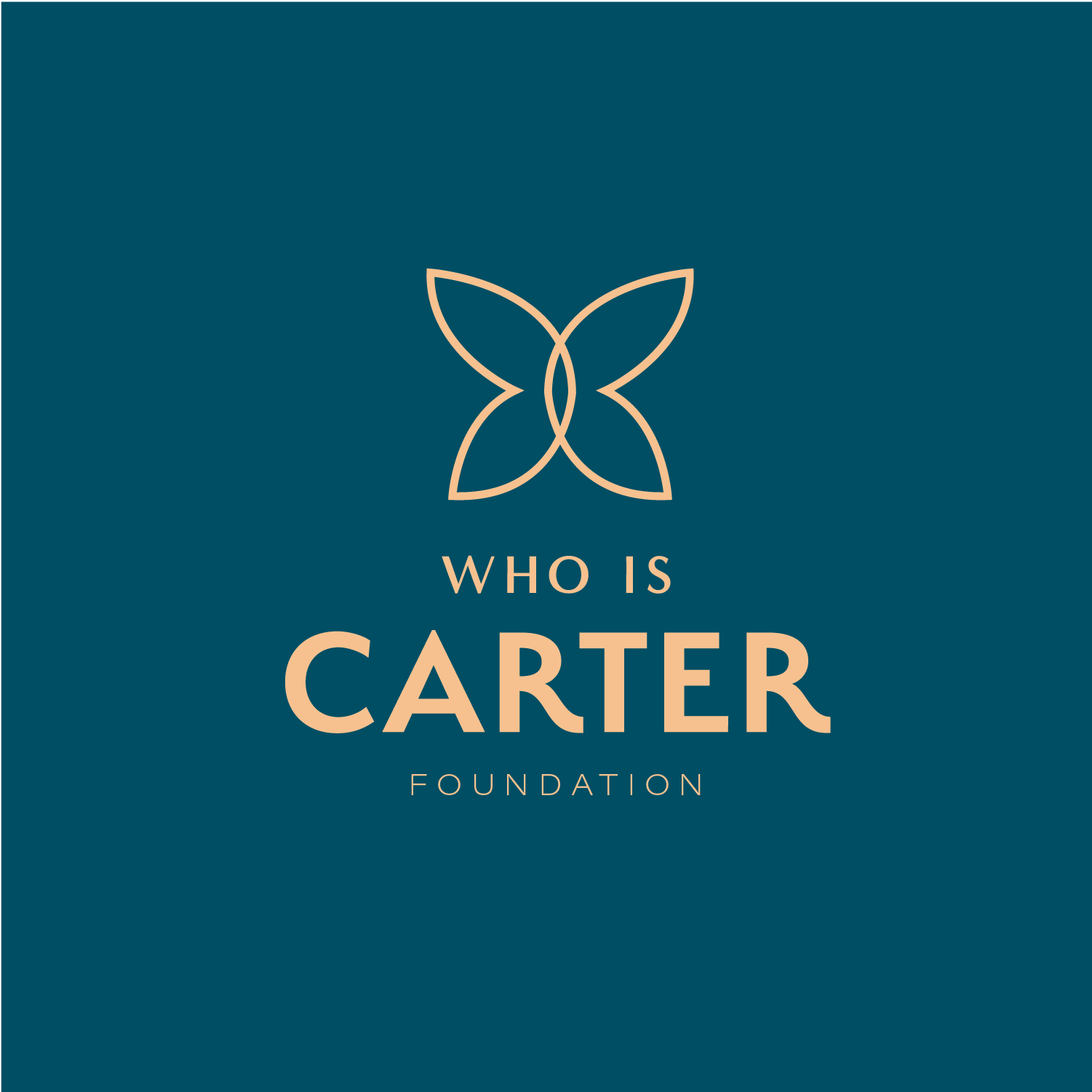 WhoIsCarter foundation hello big idea.png