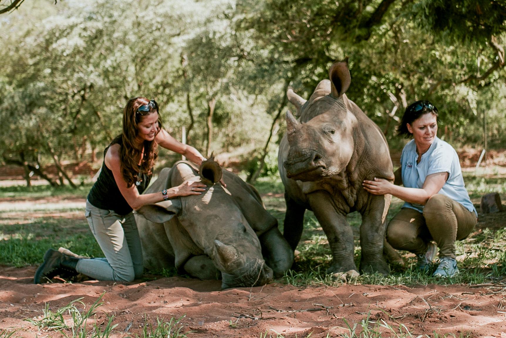 Jana and rhino babies (1 of 1).jpg