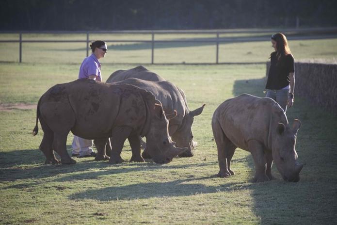 With founder Jana Pretorius at the Rhino Pride Foundation.