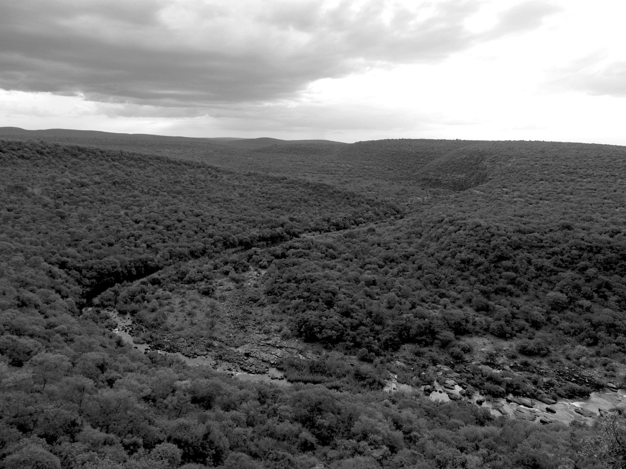 Lapalala land bw.jpg