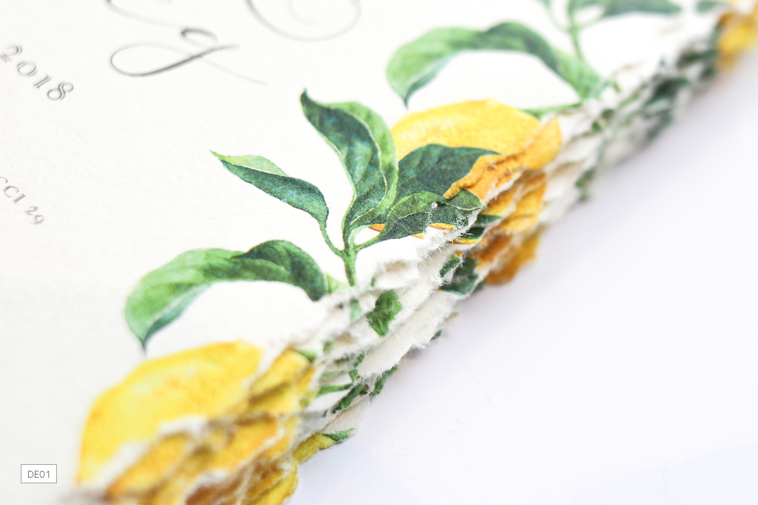 DE01-Destination-Weddings3-Lemons_ananyacards.com.jpg