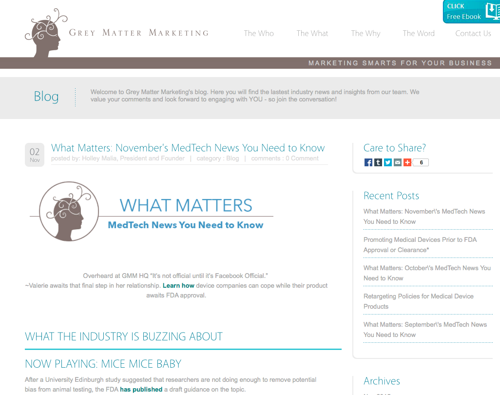 Grey Matter Marketing Monthly Newsletter    - I write the monthly newsletter for this medical device marketing agency. This involves distilling information from several news articles as well as the agency's blog into concise, witty snippets.  Grey Matter Marketing