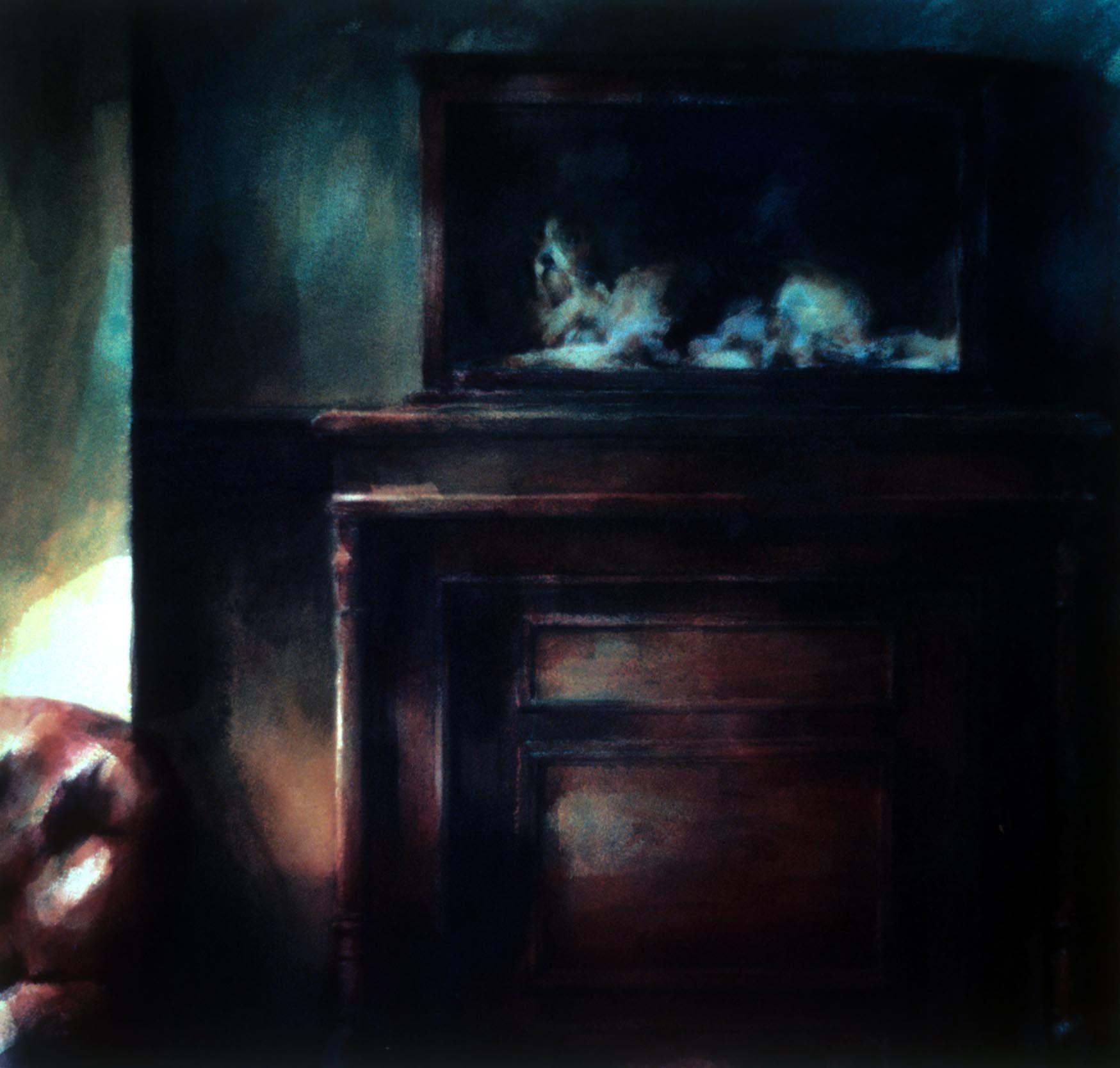 """Dog under glass, Werribee park"""" 1988, 54 x 57cm"""