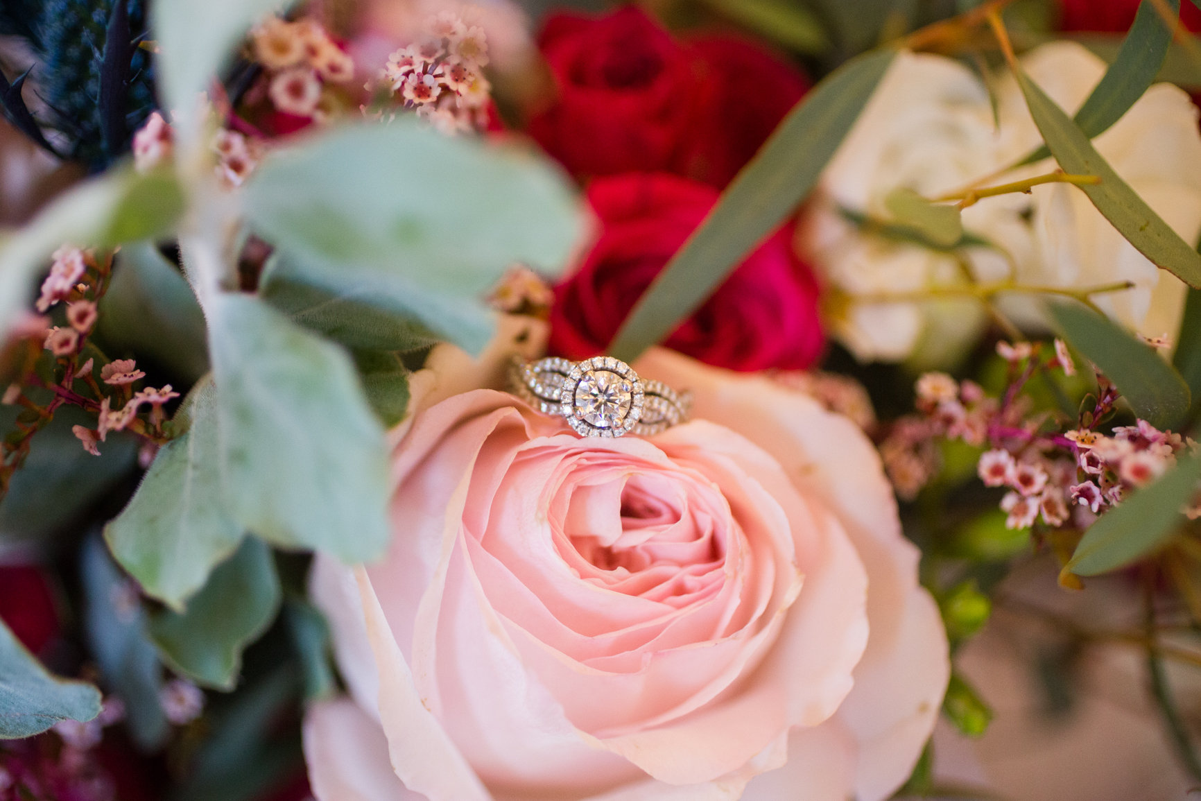 Jessica and Tannis Wedding-P C s Favorites-0003.jpg