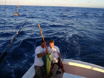 Mahimahi catch Maui fishing on Action