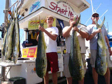 Mahimahi catch on Maui fishing charter