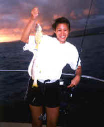 Waikiki bottom fishing catch