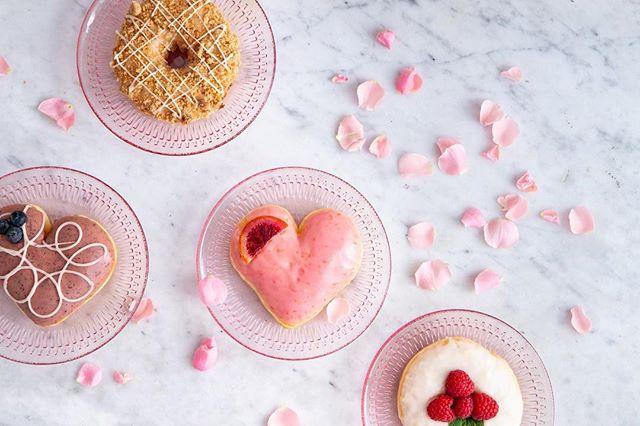 """I don't need a Valentine, I just need donuts, Champagne and my girls."" — Ladies All Around the World 💕👯♀️🍩 Happy Galentines Day!! . . . . 🍩 Assorted Standard Snobs 📷 @taylorbescobyphoto #donuts #doughnuts #galentinesday #idonutcare #instadaily #treatyoself #food #yum #instayum #laeats #dinela #valentinesday #birthday #weekendeats #la #donutsnob #love  #buzzfeast #beautiful #butfirstcoffee #nomnomnom #la #goals #instagood #photooftheday #foodstagram #vday #wheremygirlsat"