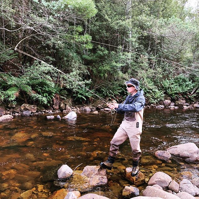 Never fly fished before, casting like a pro! 😎👊💯 #CamdenFishing #TheSeasonNeverEnds #Flyfishing #FlyFishingTasmania #Tasmania #TassieTrout #TassieStyle #DiscoverTasmania #FlyOrDie #DriftBoats #KeepEmWet #FlyGuide #GuideLife #GetAFlyGuide #ManicMates #WFFC2019 @manic_tackle_project @scottflyrods @hatchoutdoors @simmsfishing @scientificanglers