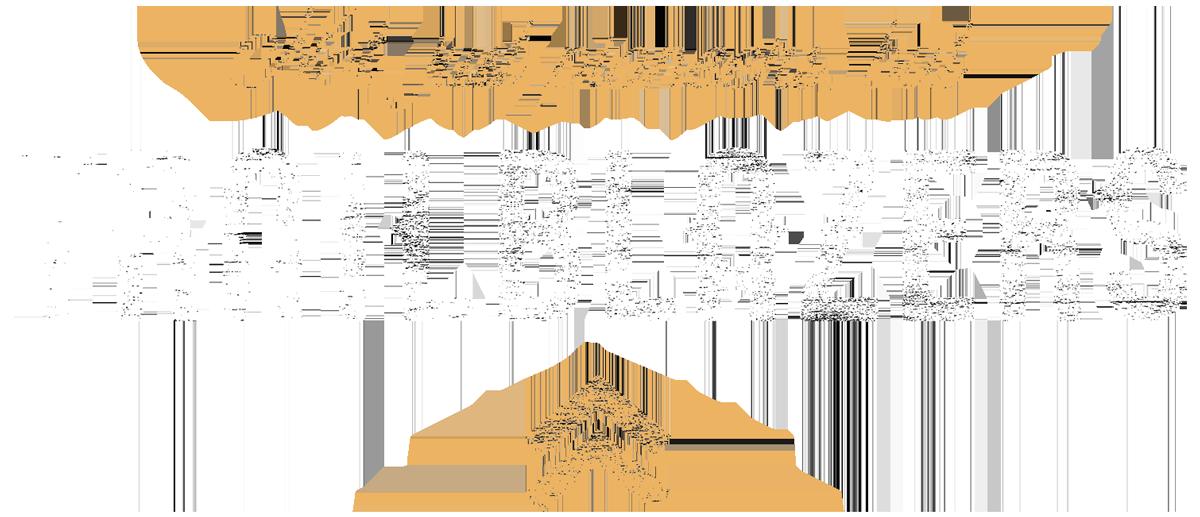 TITLE-Trailblazers---logo.png