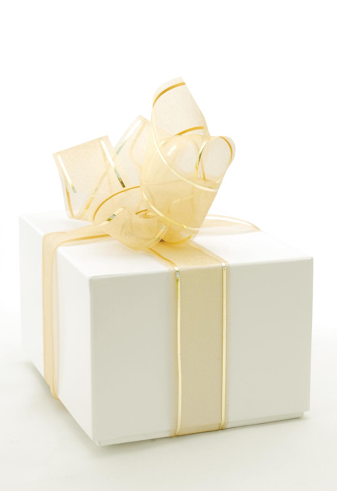 bigstock_White_Present_Box_1735532