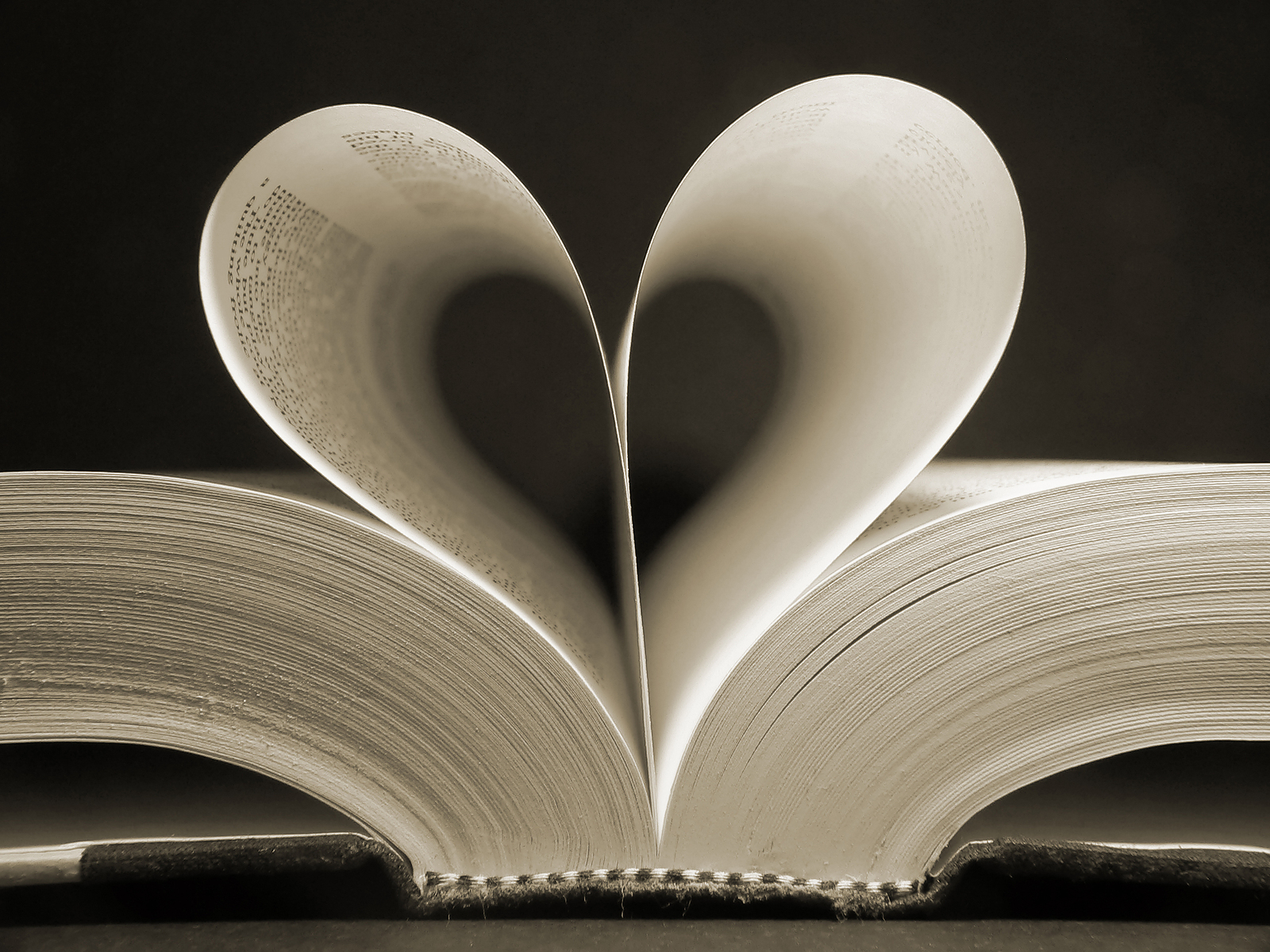 bigstock_Heart_Shaped_Book_169059