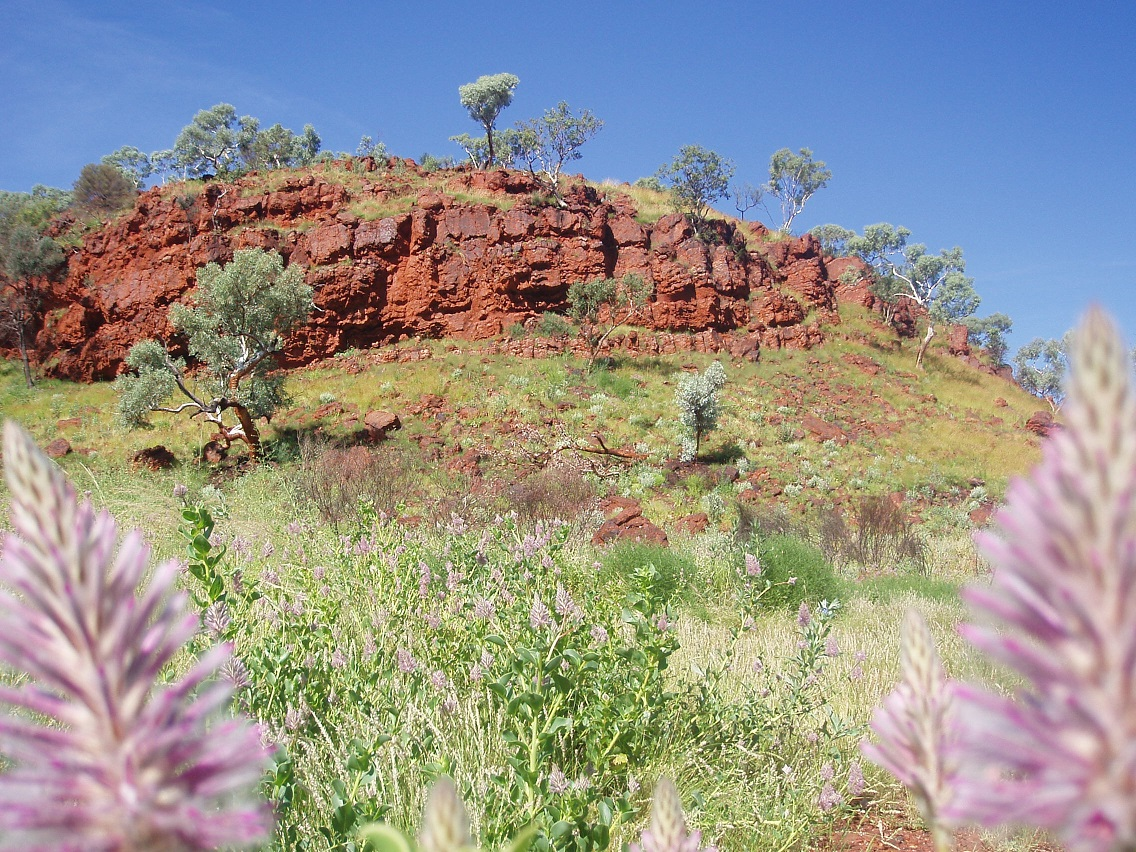 Karijini, a land of contrast!!.JPG