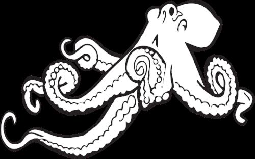 octopus-312381_1280.png