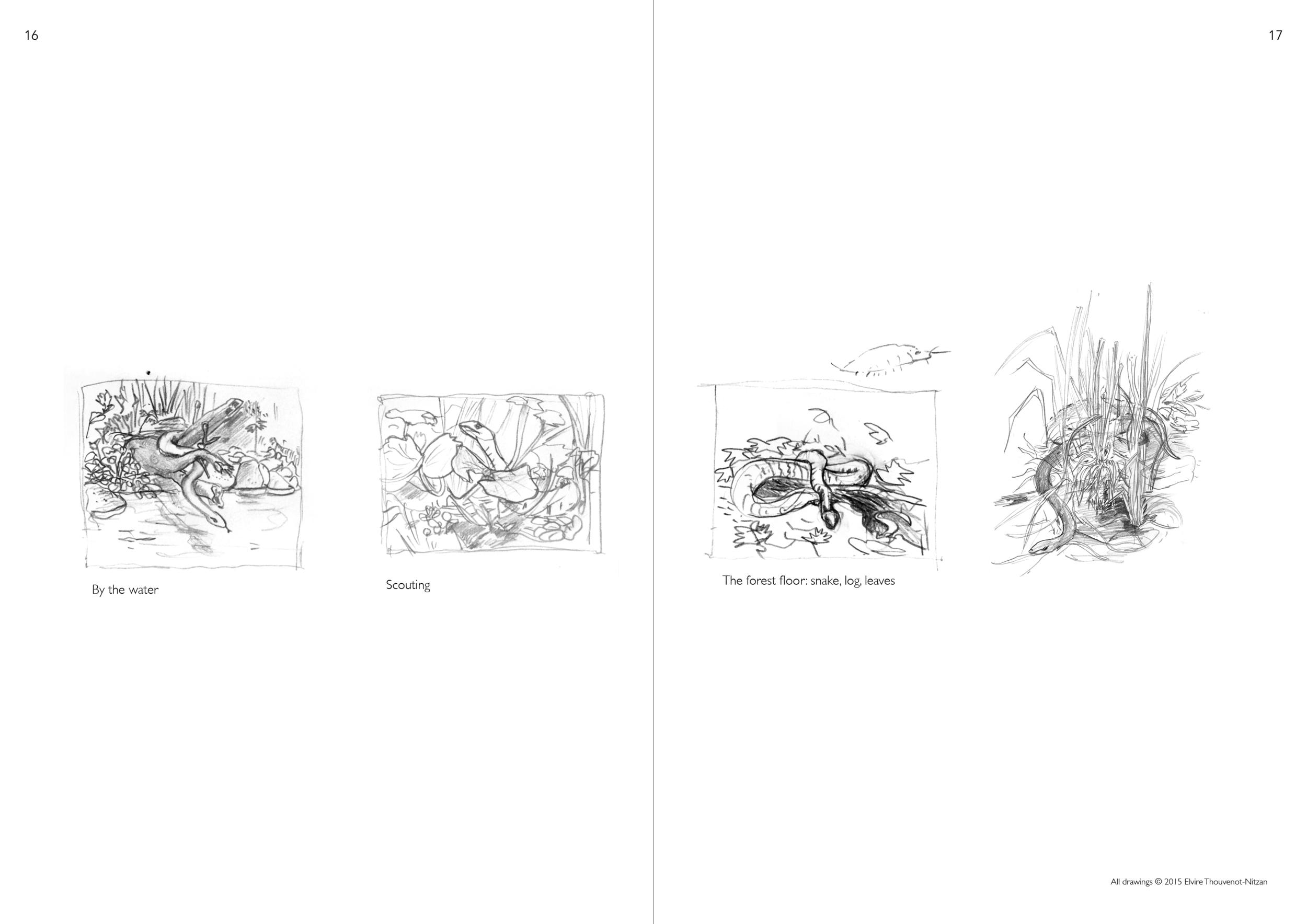 Elvire Thouveno Natrix Natrix Research9.png
