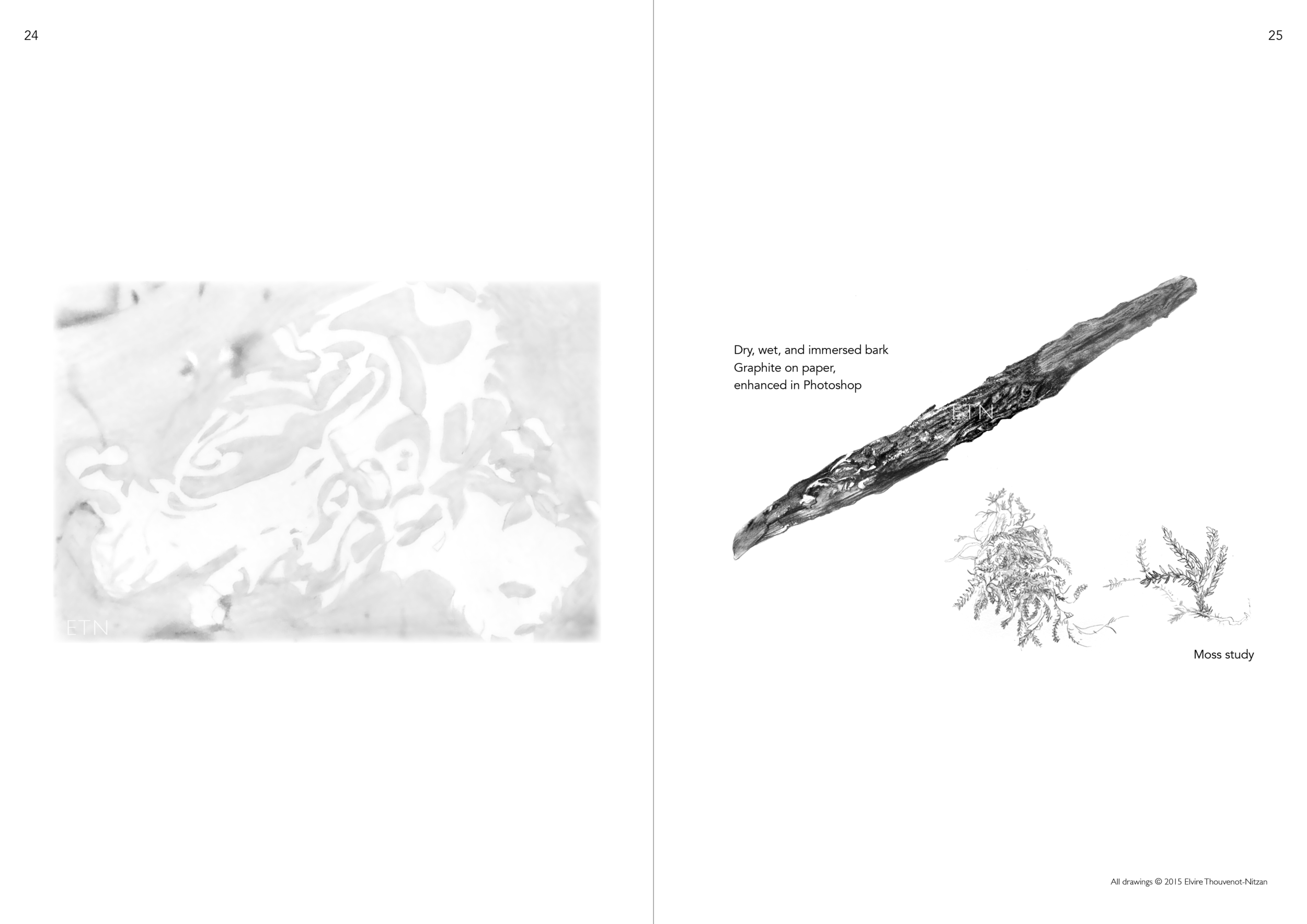 Elvire Thouveno Natrix Natrix Research13.png