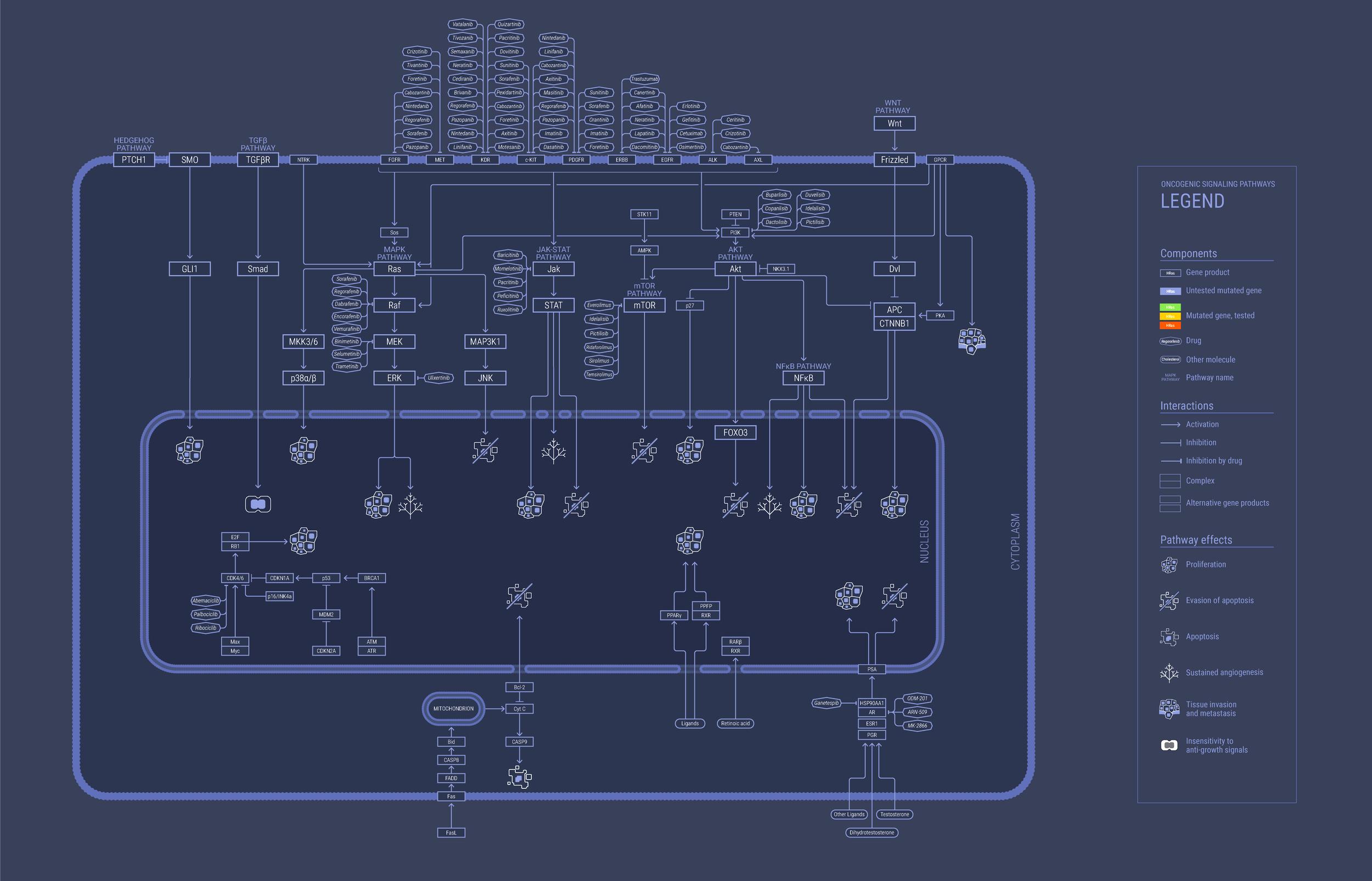 Simplified base map.