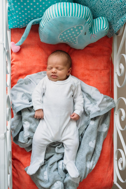 Newborn Lifestyle-3.jpg