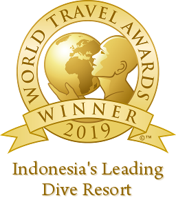 "Winner of the World Travel Awards ""Indonesia's Leading Dive Resort 2019"" - The second year running"