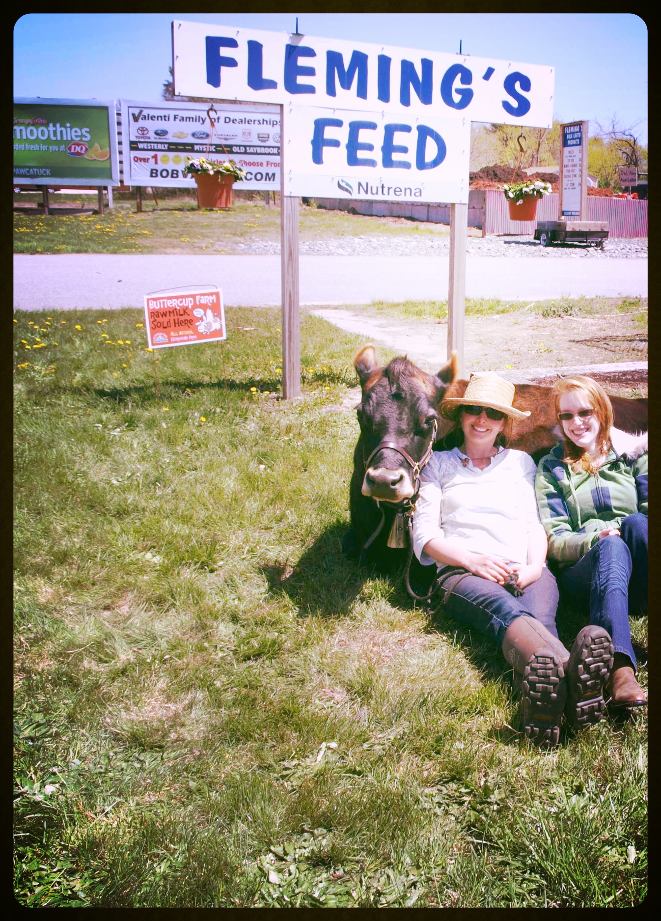 Megan, Melissa, and Driving Miss Daisy pictured here meeting & greeting at Fleming's Feed.