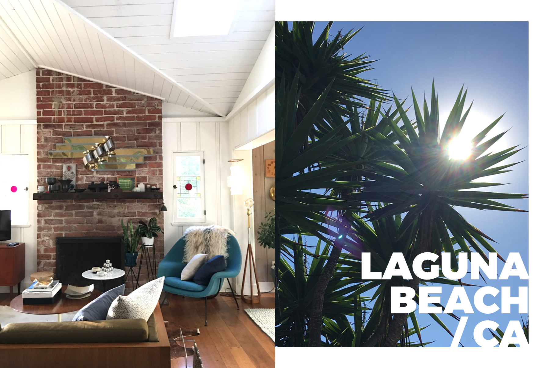Photography: Marcus Hay, Left: Marcus's new living room, Right: Tropical Leaves shield the sun