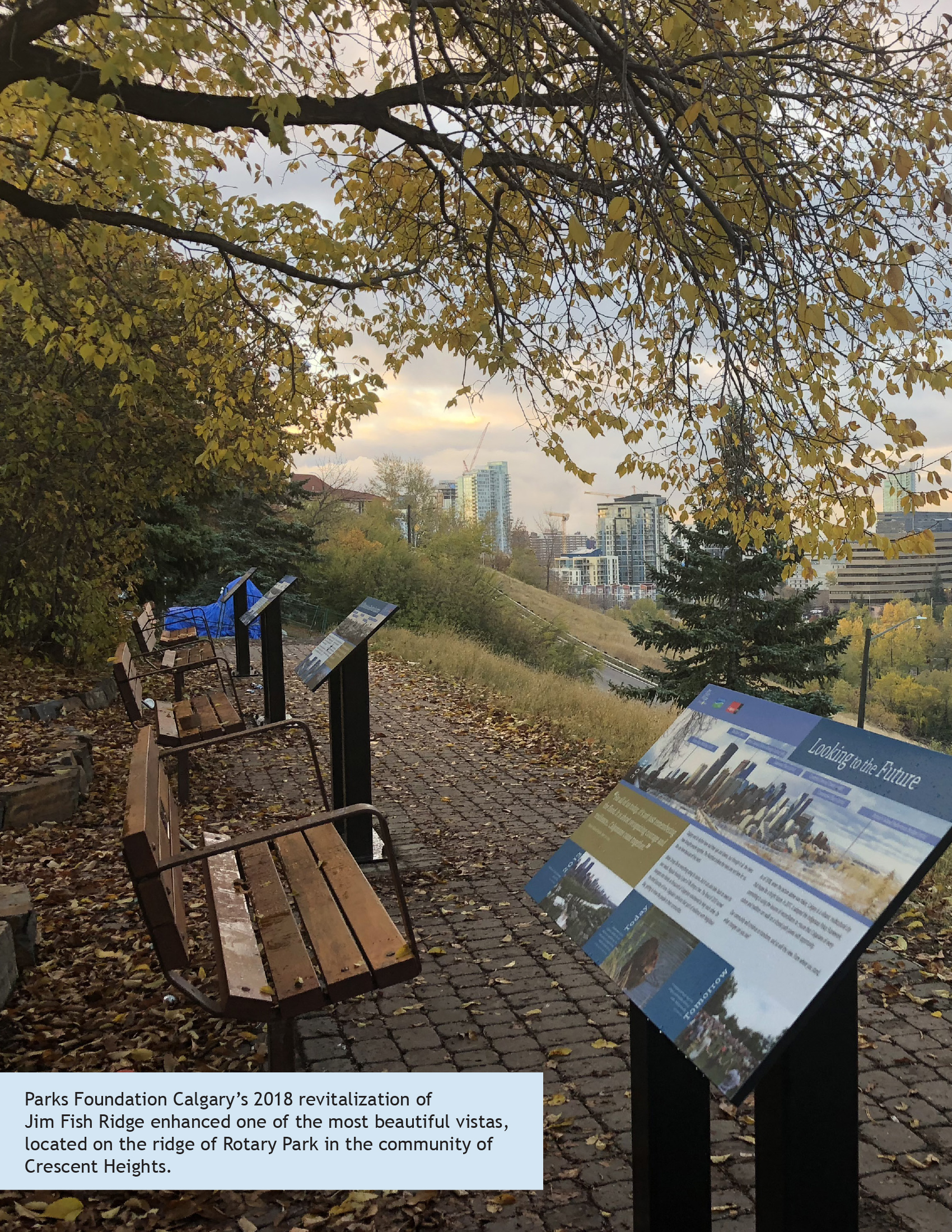 Community Impact Report 2018 Parks Foundation Calgary