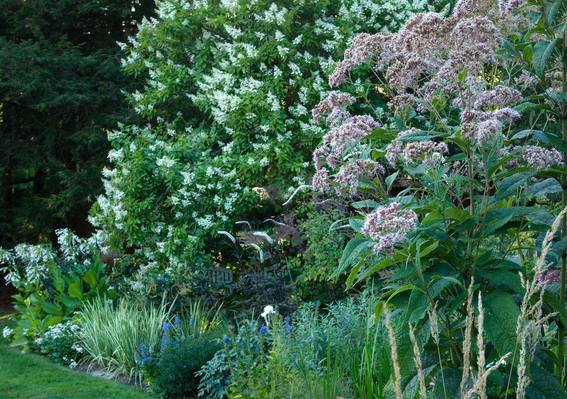 White-Garden.jpg