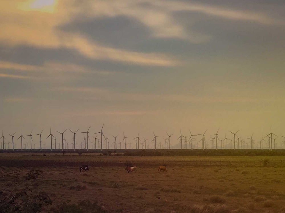 Wind turbines in the Isthmus of tehauntepec